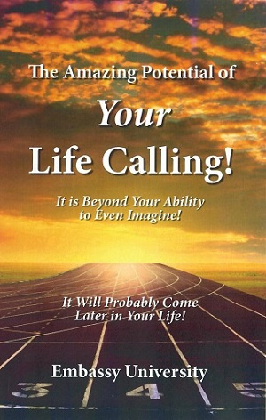Cover of Your Life Calling book